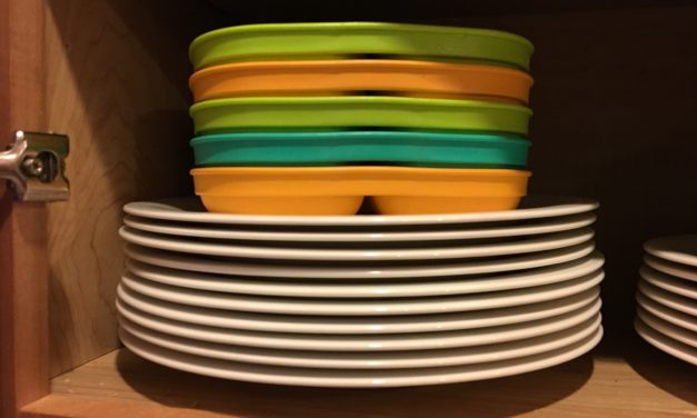 Re-Play Divided Plates