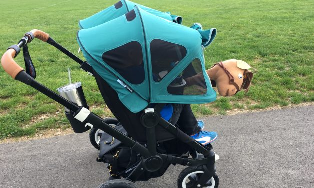 How to Dye a Bugaboo Breezy